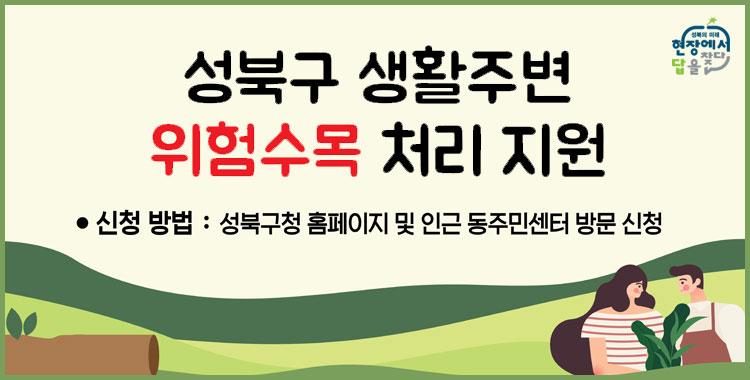 성북구 생활주변 위험수목 처리 지원 신청방법 : 성북구청 홈페이지 및 인근 동주민센터 방문 신청